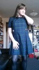 Anna Secret Poet Green Plaid Dress 1