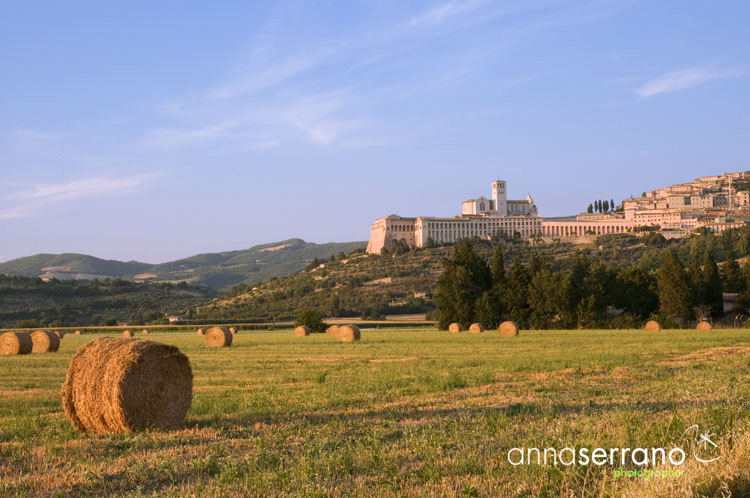 Assisi - Perugia - Umbria - San Francesco