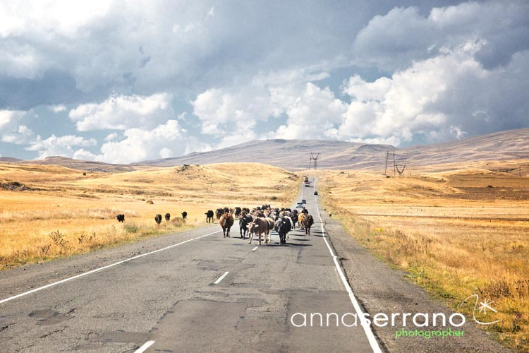 Armenia, road from Tatev to Sevan
