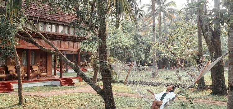 Luxury Hotels in Kerala, India