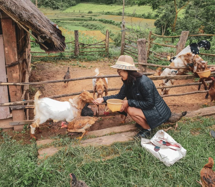 guide-to-off-the-beaten-track-kalaw-myanmar