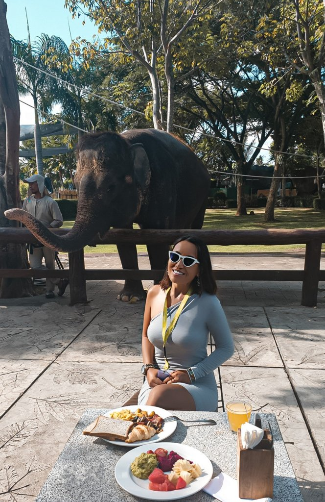 breakfast with elephants in bali 2 weeks itinerary