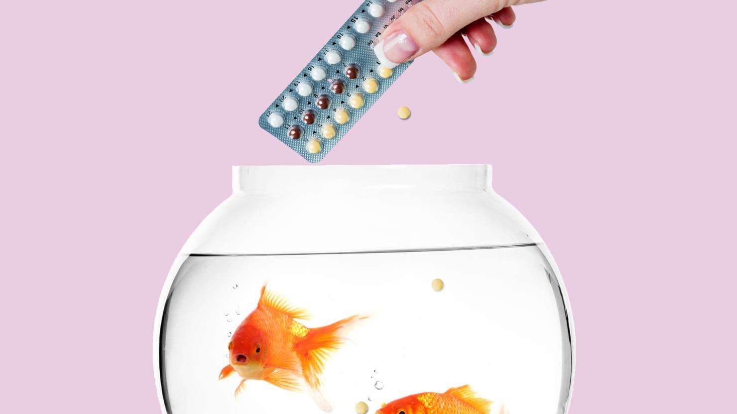 pill_fish.jpg