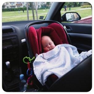 Maxi sleeping in car