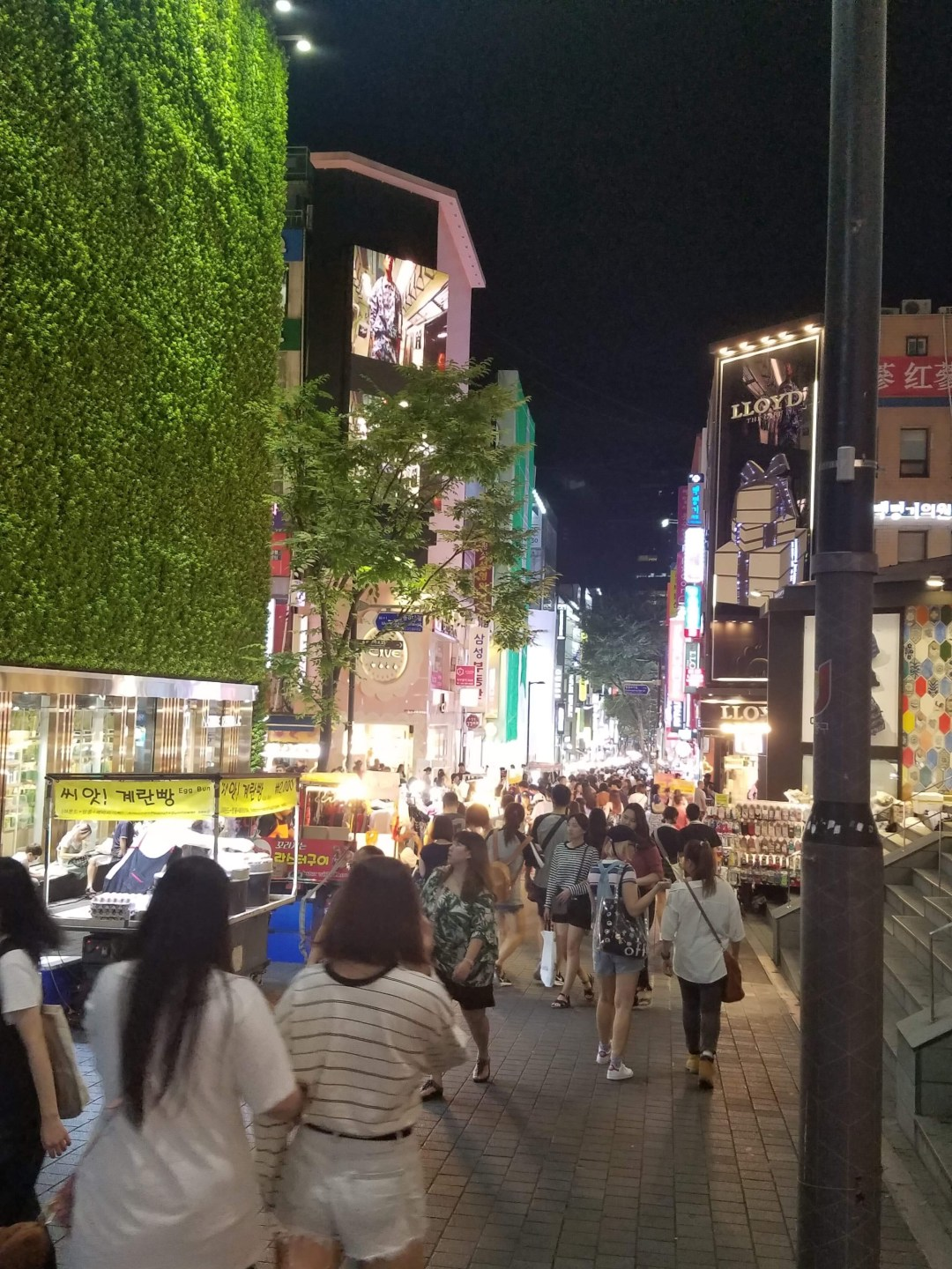 Myeongdong and its epic shopping street lights up the night
