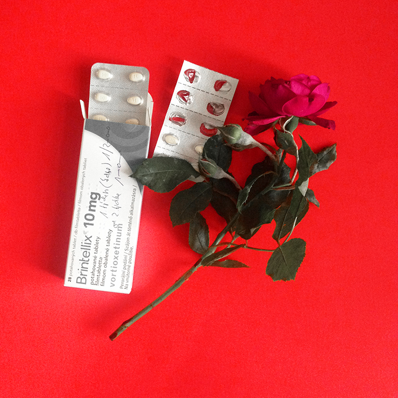 [image description: box of antidepressants, two pill blisters, and a red rose, on red background]