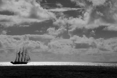 The Star Clipper sailed with us near Dominica one morning. Photograph by Ann Fisher.