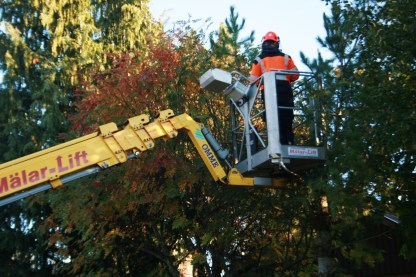 Skylift från gatan in över häcken
