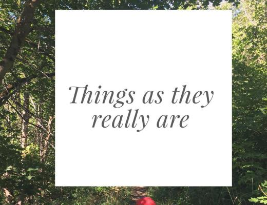 Day 164: Things as they really are