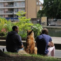 Three Friends...Regents Canal, London