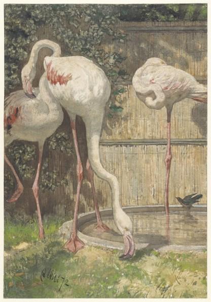 wanddoek schilderij flamingo's