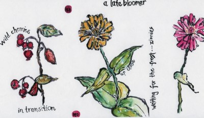 Blossom-Tryptic-AB