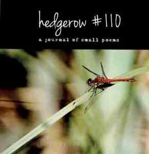 Hedgerow #110 12-2017