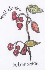 Wild-Cherries-AB