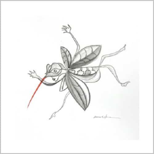 Dessin Insecte bicephale- Mine graphite- theme ile perdue Anne Carpena