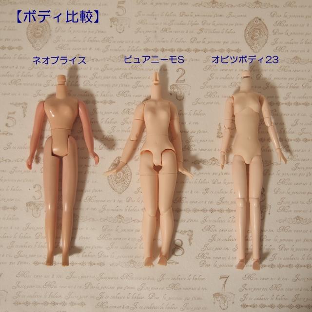 body-hikaku