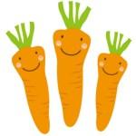 Porkkanan häikäisevä matka suolistossa