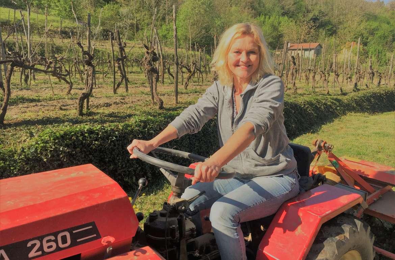 traktor-vingården-første kjøretur