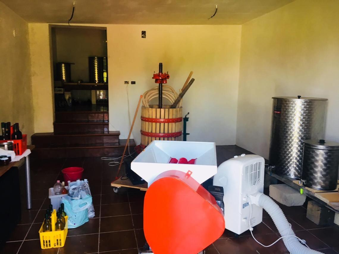 En vinkjeller får gjerne stå i fred om sommeren før ny vin skal settes på høsten. Men ikke i år. Det ble rett og slett sommerjobb i vinkjelleren på vingården i Italia. Du kjenner deg kanskje igjen, om du har en hytte? Du tror du skal ha ferie, men så dukker det opp uventede prosjekter. Klarer du nyte det?