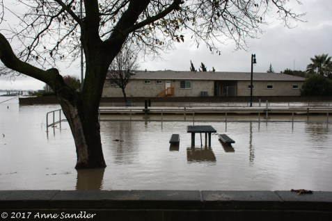 Picnic table in a flooded area.