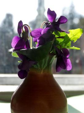 e7f48-violet