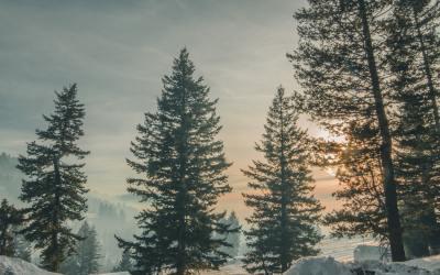 Les bienfaits du grand air en hiver