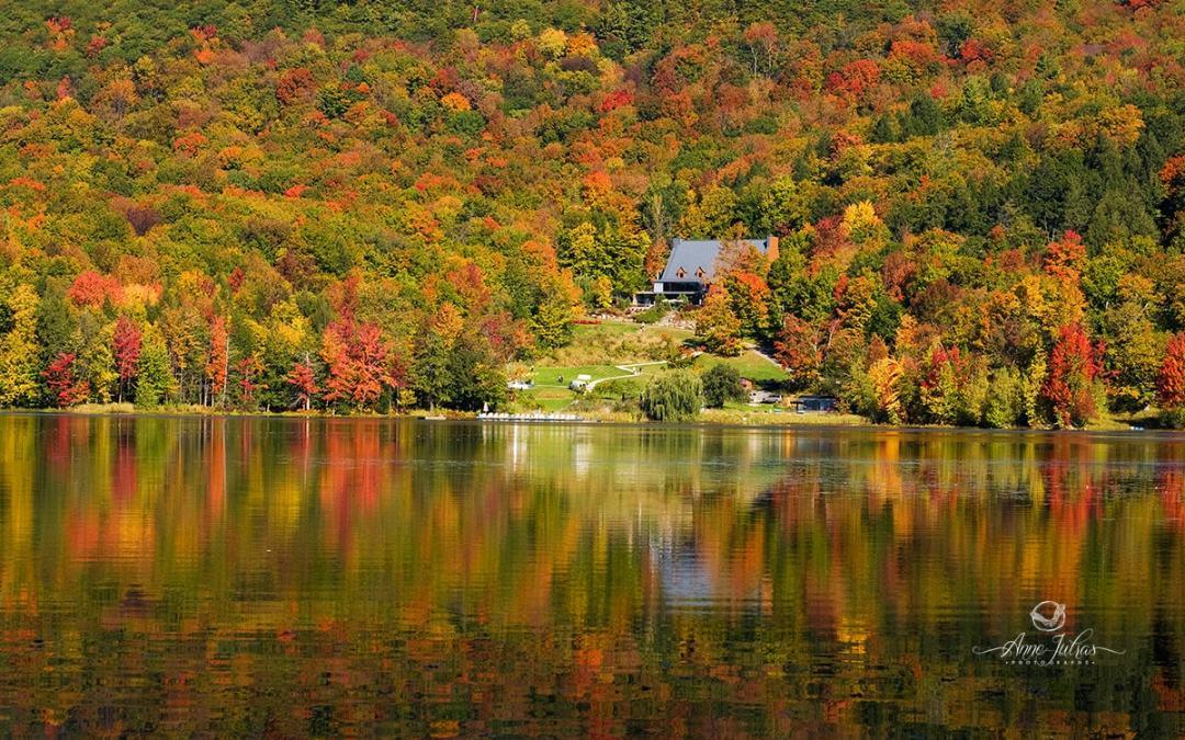 10 idées lumineuses pour de belles photos d'automne
