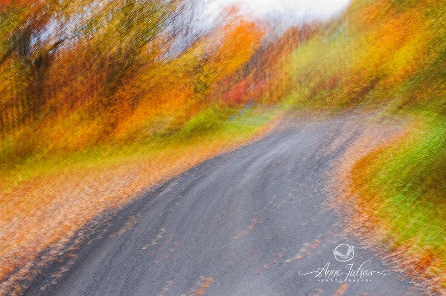 Peindre à la Monet - Belles photos d'automne