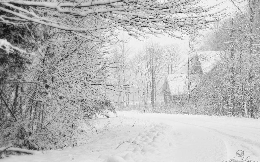 Comment réussir vos photos d'hiver ?