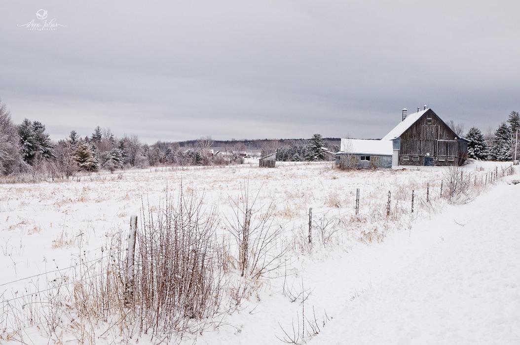 Photo paysage : 10 conseils pour intégrer un élément architectural