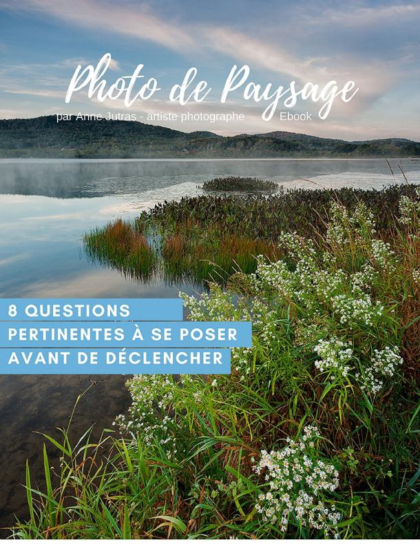 Couverture Ebook - 8 questions essentielles à se poser