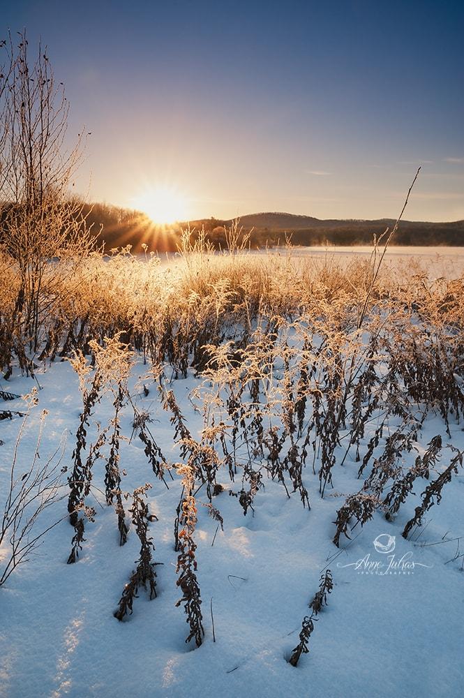 Photo d'hiver : comment se tenir au chaud ? par Anne Jutras