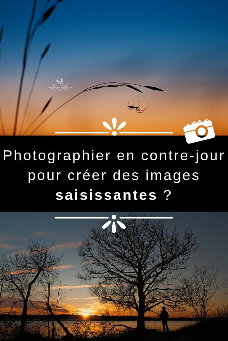 Photographier en contre-jour pour créer des images saisissantes? par Anne Jutras, artiste photographe