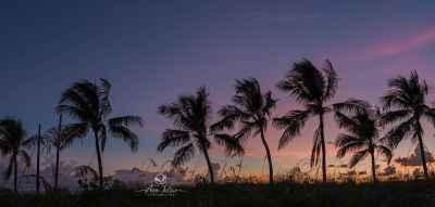 Sumbrero beach - Marathon, Keys, Flordie