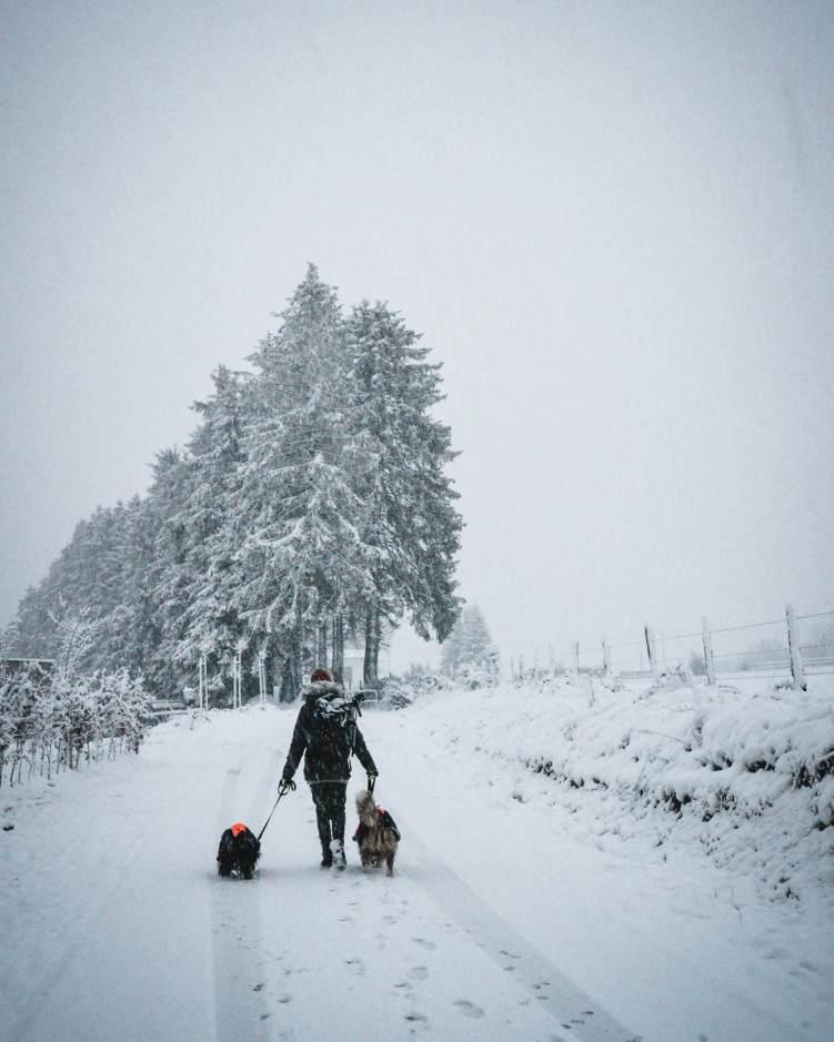 15km door Winterwonderland langs skipiste van Ovifat 1