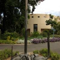 At the Herbarium