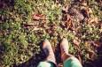 herfst (1 van 1)-25