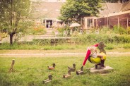 vogel_klein (5 van 12)