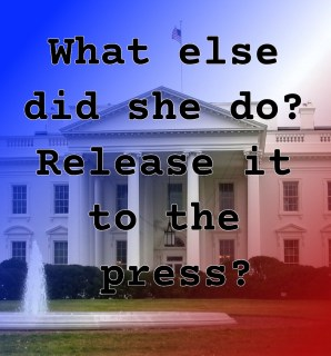 Pull Quote from romantic fiction serial White House Rhapsody: What else did she do? Release it to the press?