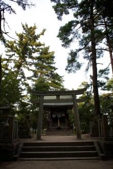 So. Many. Shrines. Sick of them yet?