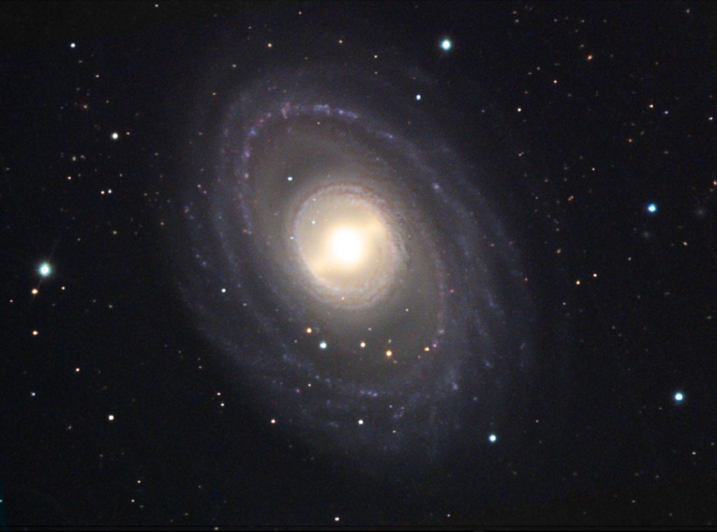 NGC 1398. a large. barred spiral galaxy in Fornax   Anne's Astronomy News