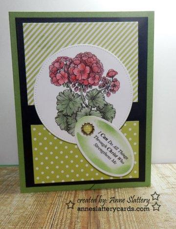 power-poppy-geranium