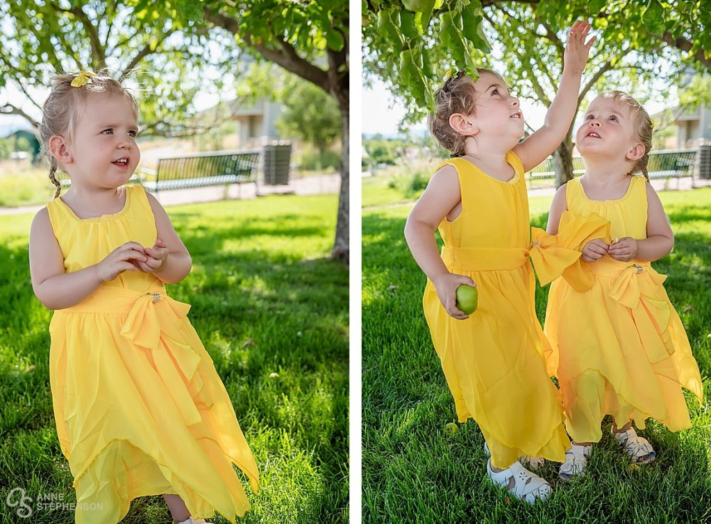 The flower girls entertain themselves before the wedding by picking small green apples from the ground and trying to reach for more in the branches of the trees.