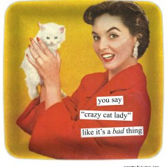 """Kitchen Towels Wholesale Best Paint You Say """"crazy Cat Lady"""" Like It's A Bad Thing 