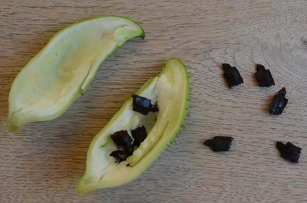 Cyclanthera pedata | Olijfkomkommer met zaden - Achoccha with seed