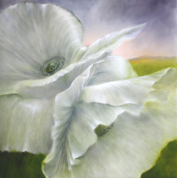 painting of white poppies