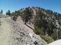 Mt. Baden Powell 006