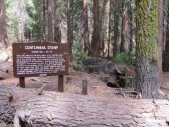 General Grant Trail - 004