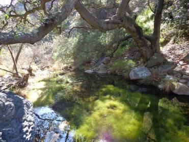 Zuma Canyon 006