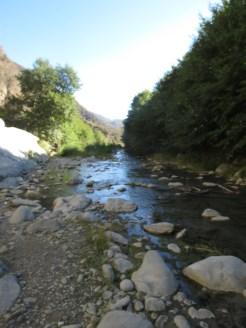 East Fork Trail 010